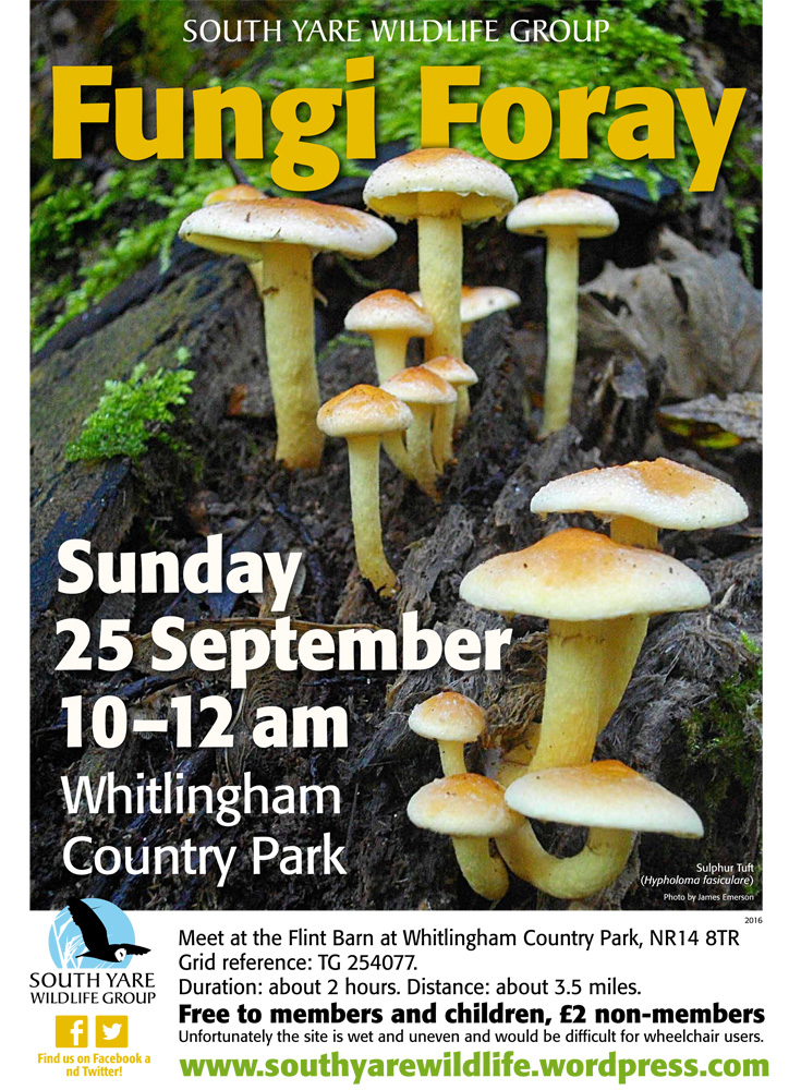 fungi-foray-sep2016