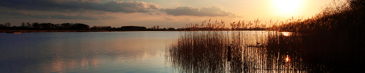 filby broad privacy banner