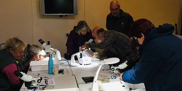 pond workshop microscopes
