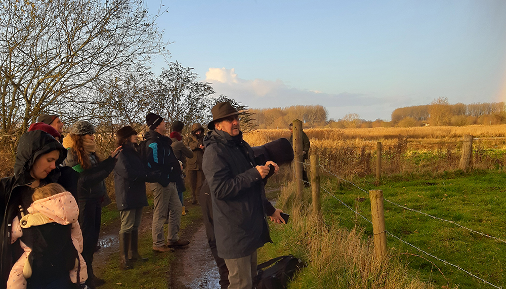 A winter walk around Surlingham Church Marsh
